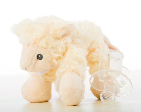 mazilica ovcica