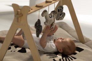 Quax Baby  Gym – Za bebe i malu djecu